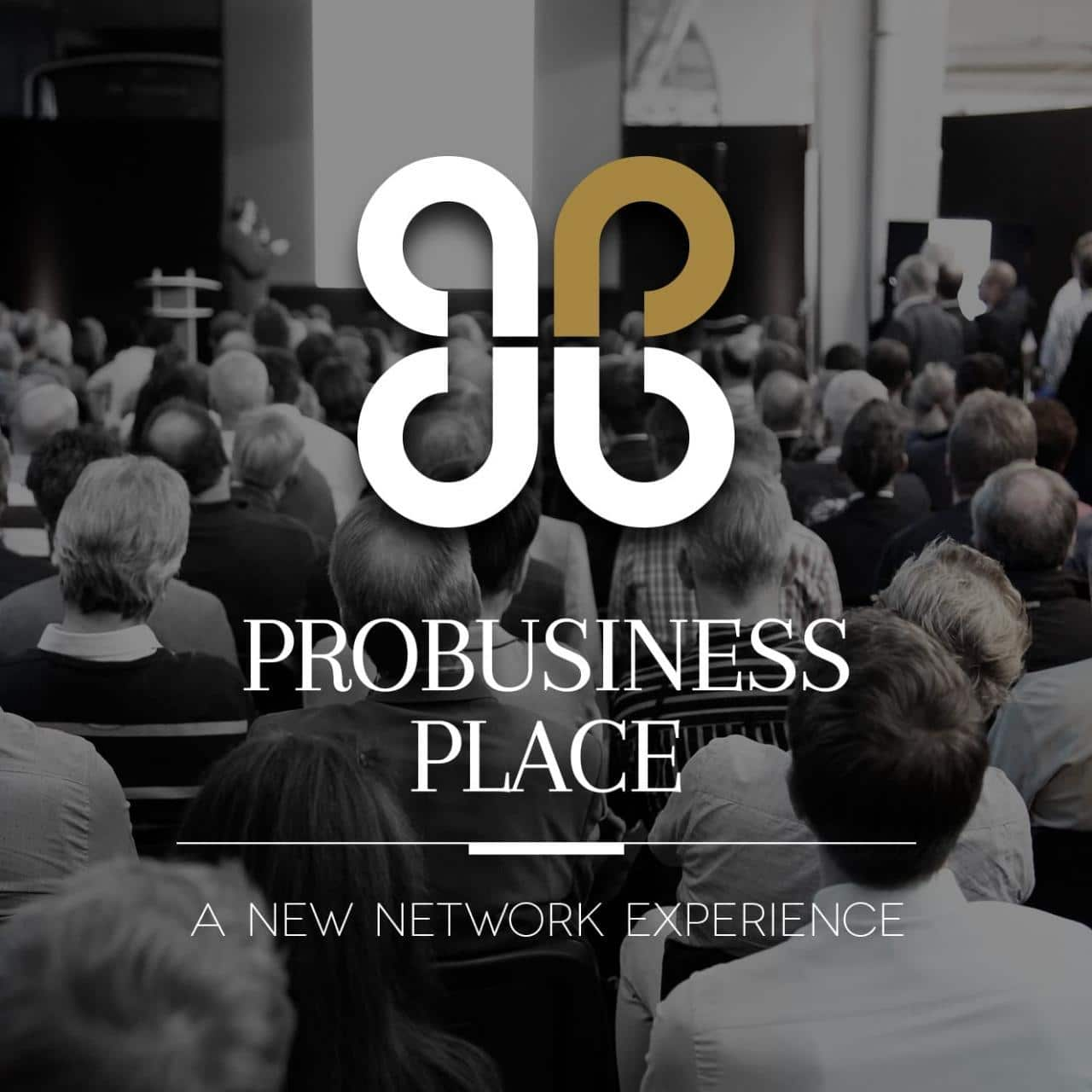 ProBusiness Place: A Networking Experience