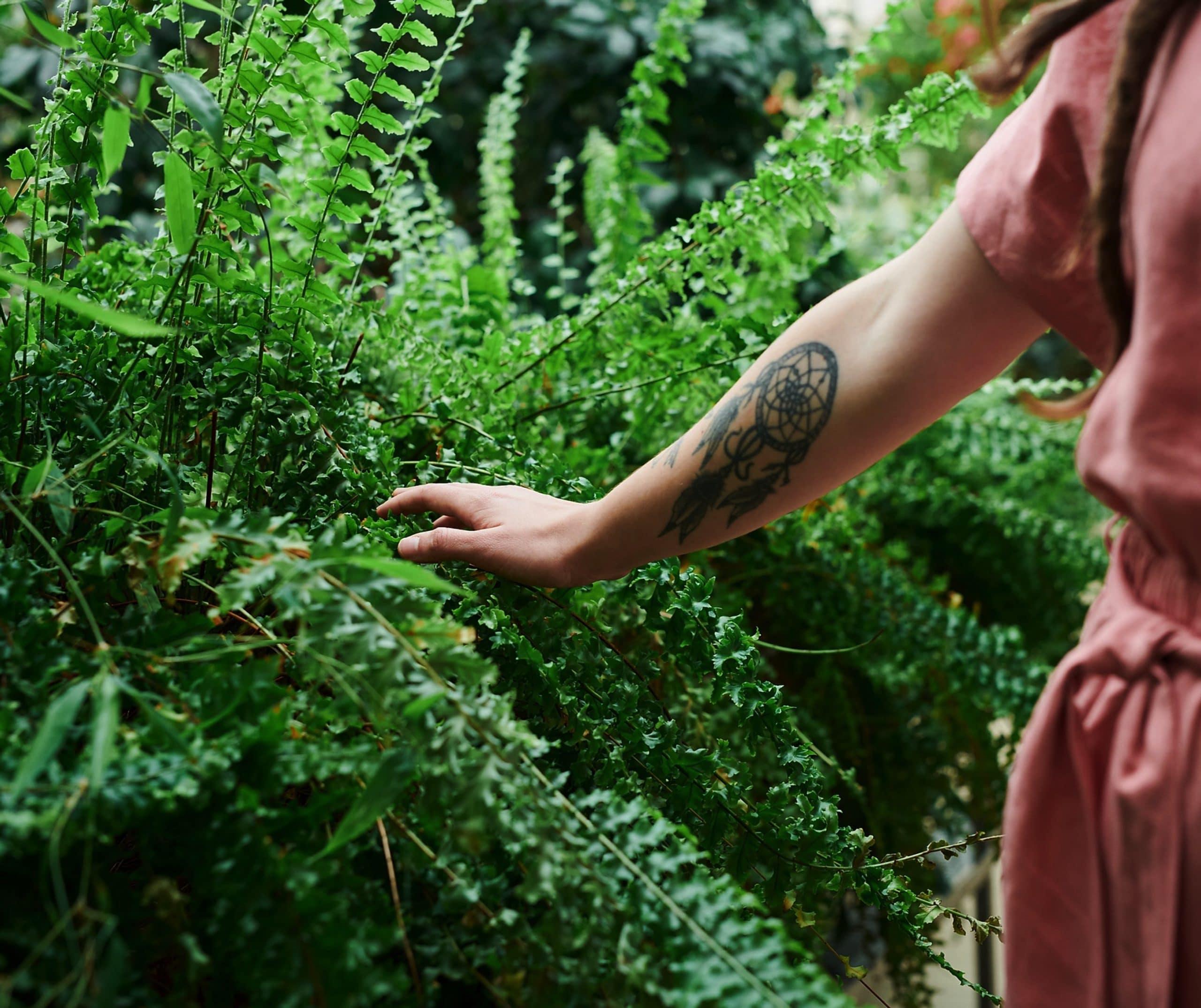 Los jardines de la vida